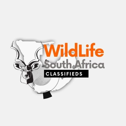 WildLife South Africa Classifieds Logo