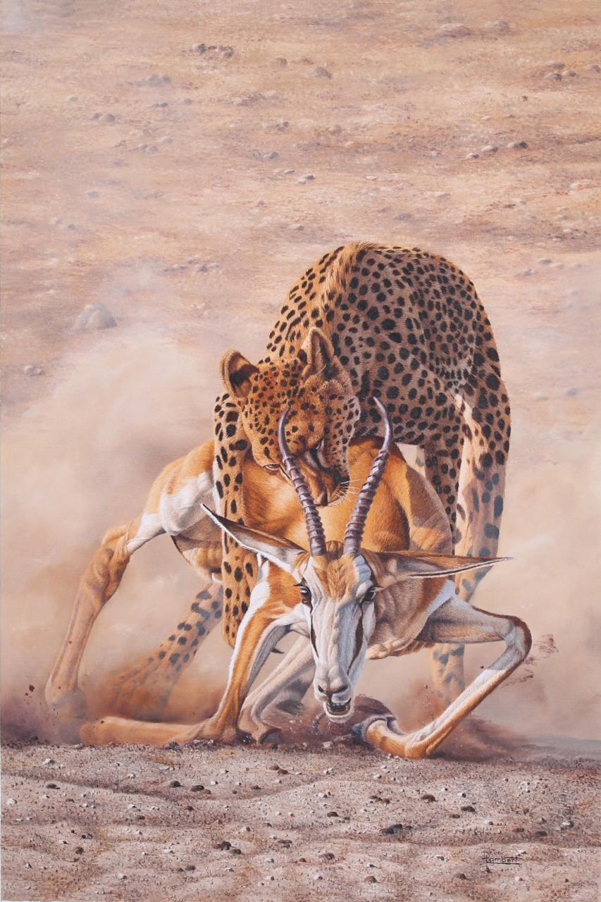 Death of the Springbok
